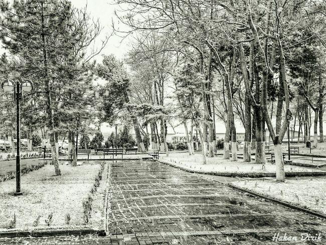 Siyah&beyaz  Ankara Gününfotosu Winter Cold Winter ❄⛄ Snow Snow ❄ Snow Day ❄ Winter Streetphotography Kar
