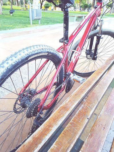 bici Recreation