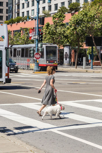 Woman with dog on road in city