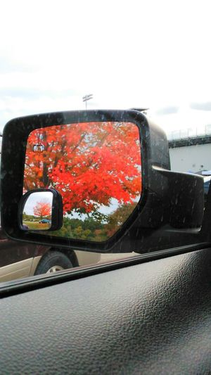 Saw before drive home yesterday... Orange Color Sky Vibrant Color Car Interior No Filter, No Edit, Just Photography Onlygodcouldcreatethis Beauty In Nature Fall Foliage Sawonmyadventure Saw In My Mirror Bsm_shots