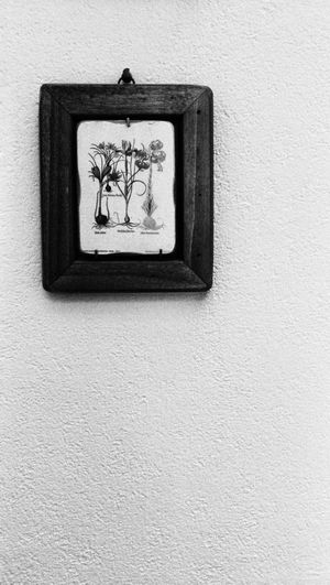 No People Close-up Picture Design Interior Design Black And White Photography Wall Struktur