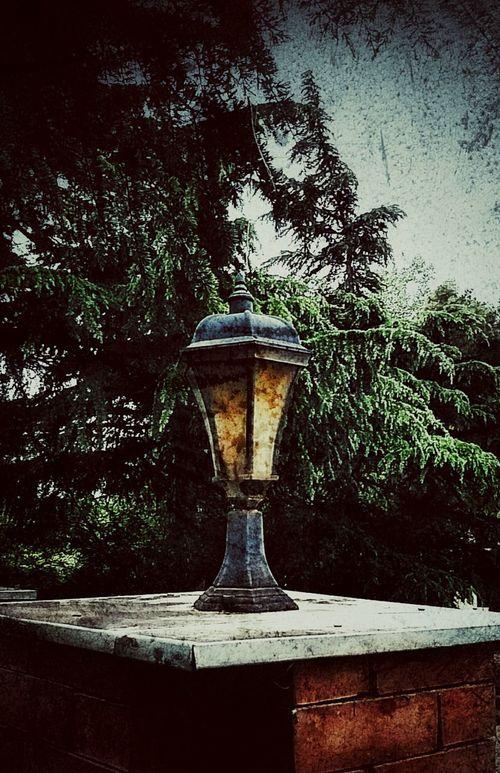 Lamps No People Old Lamp Stand EyEmNewHere Gardenlight Bulbs Bulbphotography Retro Styled Gothic Architecture Gothic Misty From My Point Of View Lonliest Place EyeEm Gallery Photography