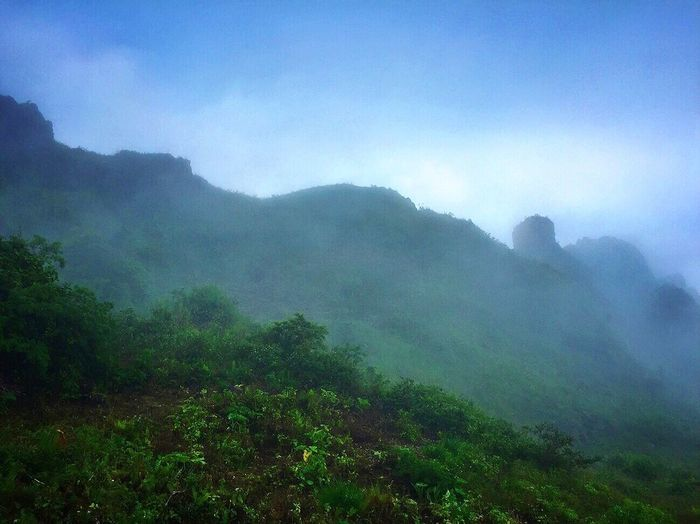 Fog Mountain Nature Landscape Beauty In Nature Scenics Day Foggy Weather Mountain Range Mist Outdoors Sky Adventure Travel Destinations Scenery Tourism Cloud - Sky Forest Osmeña Peak Cebu City, Philippines