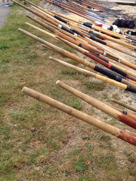 Race Day Skerries Ireland Rowing Regatta Skiff Sea Oars Boat