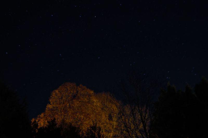 night scape 2