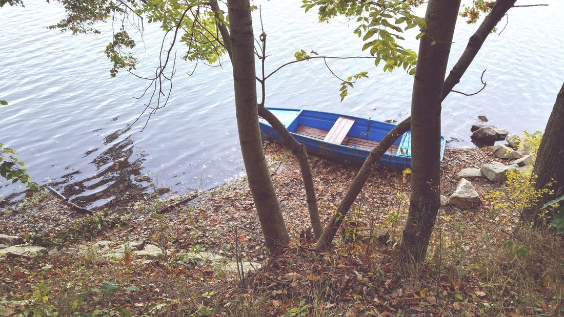 Autumn Colors Water Tranquility Nature Beauty In Nature Outdoors Nature_collection Sailing Sailboat Tree Tree Water Tranquility Nature No People Horizontal Outdoors Slide - Play Equipment Day Hammock Beauty In Nature Transportation