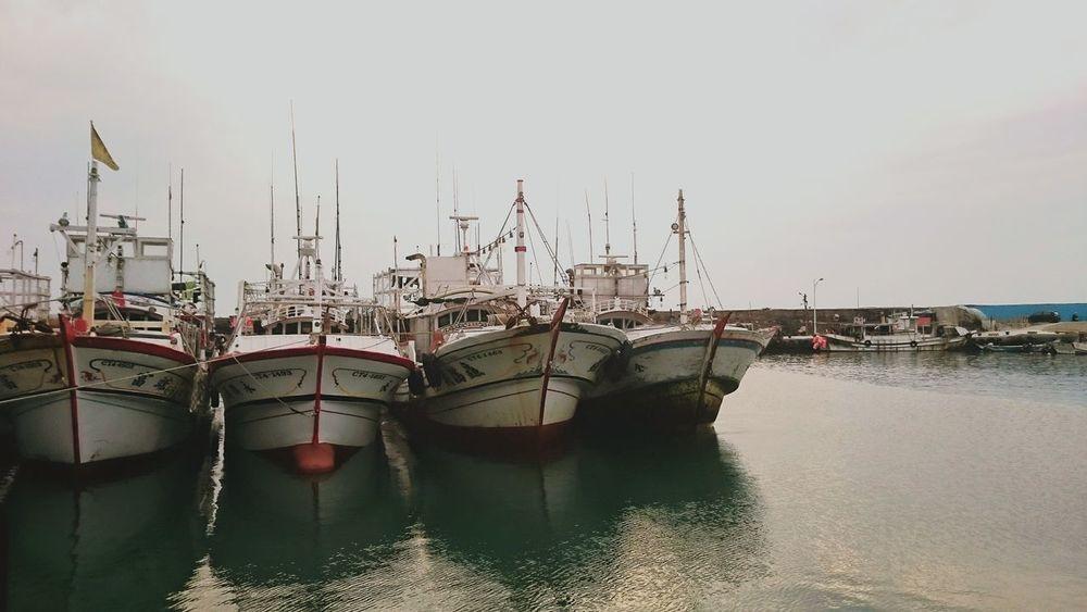 🐙🐚🐠🐟🐬🐳🐋。 Fishing Port Taiwan