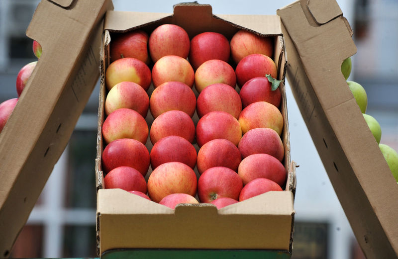 Close-up of fruits in box