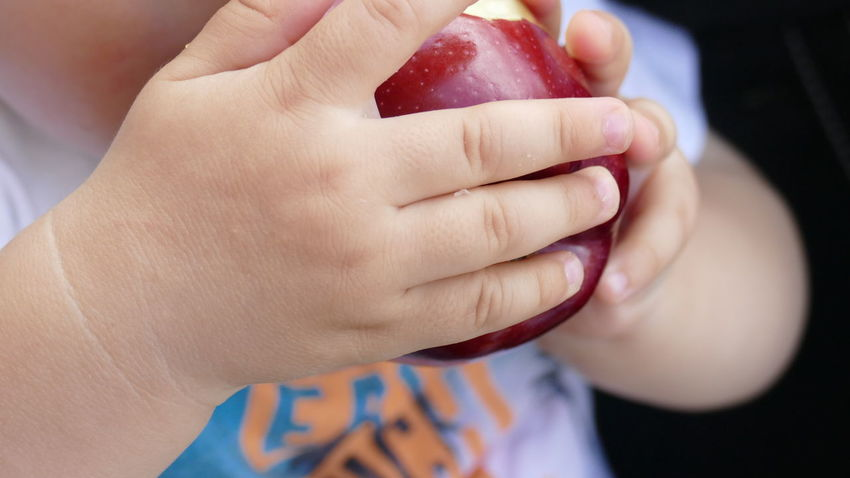 Apple Apple With Kid Apples Childhood Close-up Day Food Food And Drink Freshness Fruit Human Body Part Human Hand Indoors  Kid Hand  Lifestyles Midsection Nail Polish One Person People Real People