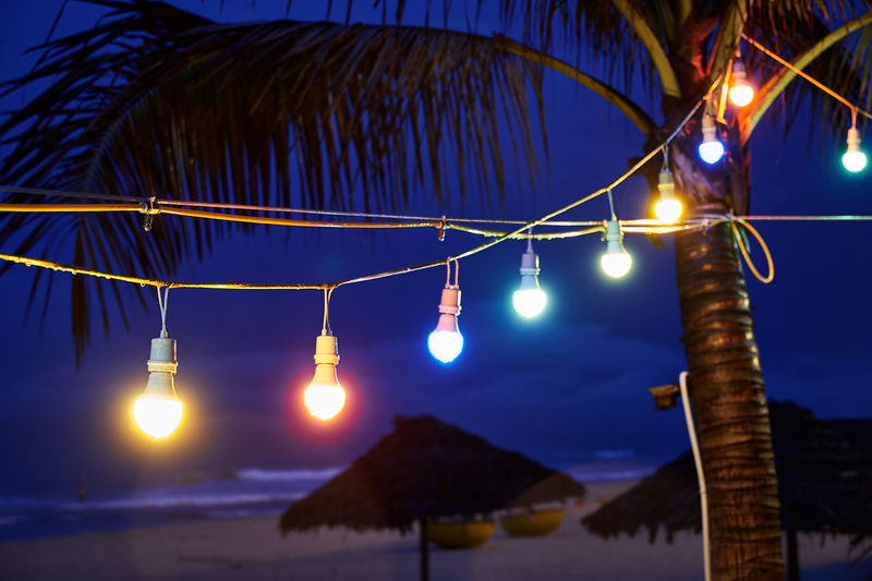 EyeEmNewHere Green Palm Tree Red Vietnam Blue Close-up Coloured Lights Danang Danangbeach Electricity  Hanging Illuminated Night No People Outdoors Sea Umbrella Yellow