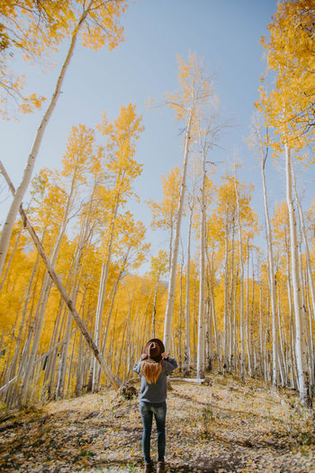 Full length of man standing amidst trees in forest during autumn