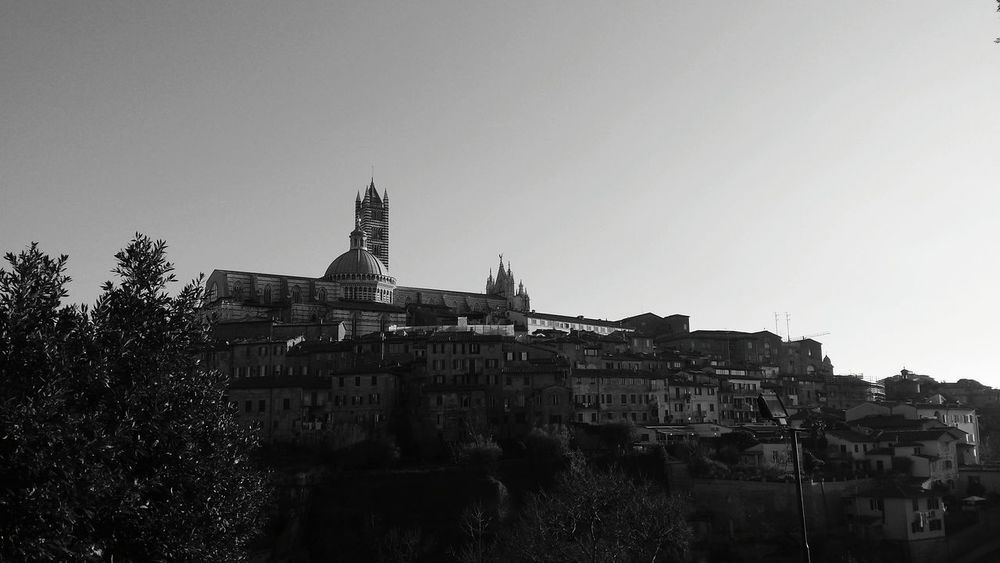 Showcase: January B&w B&w Photography B&wphotography Siena Siena Italy Duomo Di Siena Church Chiesa Italy View From My Point Of View Traveling Enjoying The View Popular Photo Check This Out