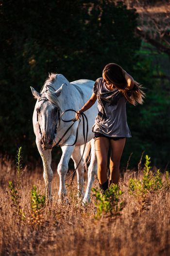 Fashionable woman with horse on field during sunny day