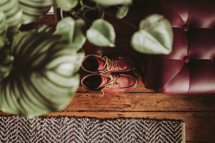 Boots REDWINGS Red Wing Boots Close-up Focus On Foreground Furniture Glasses Green Color High Angle View Home Interior Indoors  Leaf No People Pattern Personal Accessory Pink Color Plant Plant Part Selective Focus Shoe Sofa Still Life Table Wood - Material