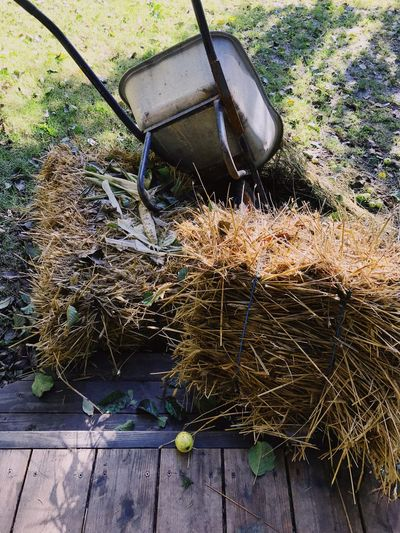 No People Day Outdoors Abandoned Fishing Tackle Nature Nautical Vessel Grass Still Life Apple Inverted Cart Hay Autumn Collection Autumn 2017 Autumn Colors Nature