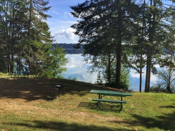Picnic table near trees and water Tree Nature Grass Tranquility Beauty In Nature Chair Tranquil Scene Lake Water Growth Tree Trunk No People Landscape Day Scenics Outdoors Sky