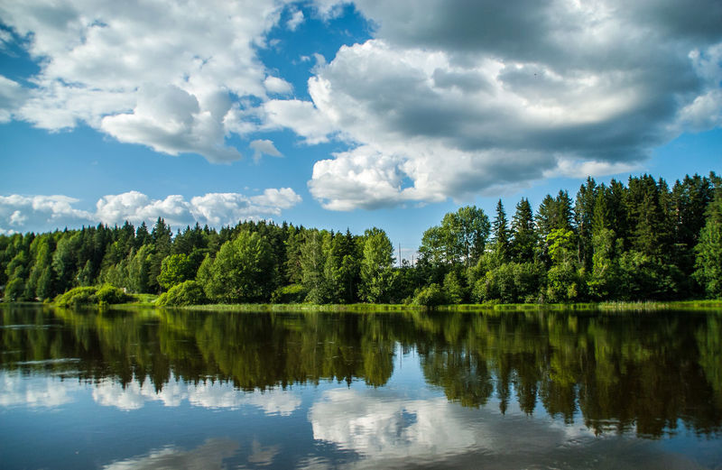Trees and sky reflecting on calm lake
