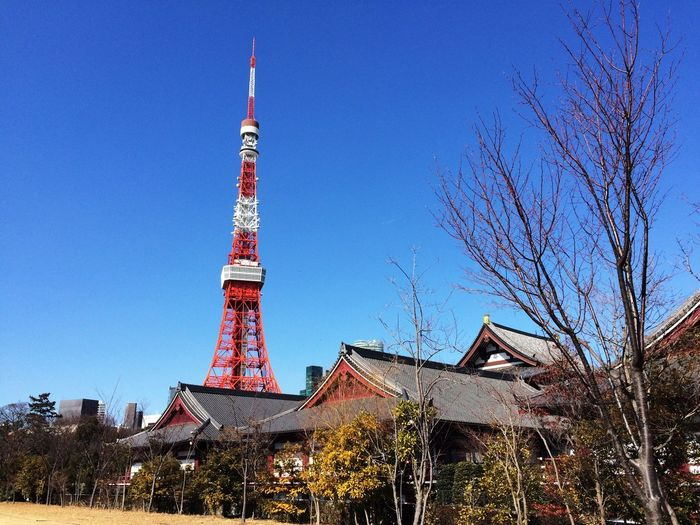 昨日の雨雪に打って変わり、天晴れな晴天。 Blue Sky Tokyo Tower Zojojitemple Tokyo Days