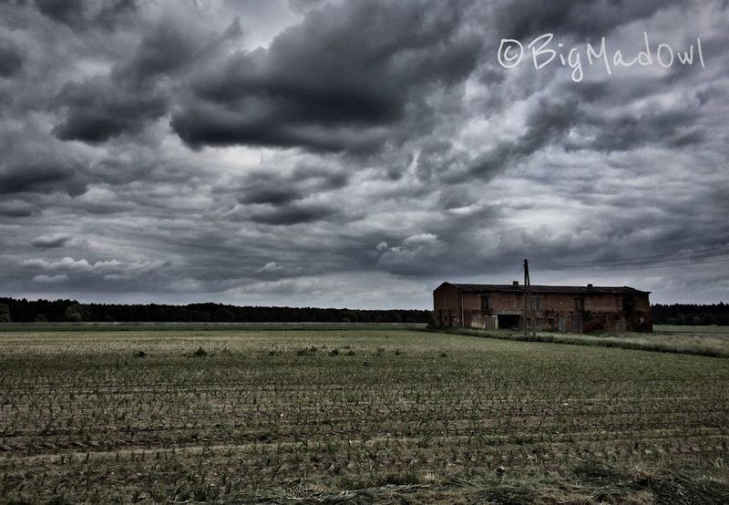 EyeEm Nature Lover Landscape Clouds And Sky Hanging Out Walking Around