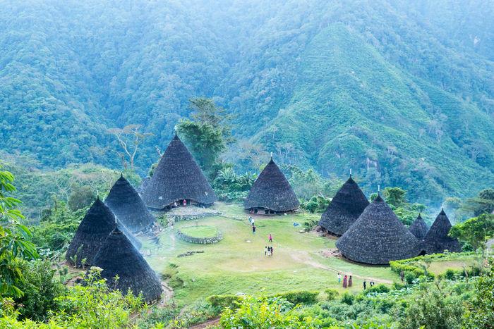 Unique house Construction Traditional Cultural Waerebovillage Flores East Nusa Tenggara Kerucut Cone The Week On EyeEm Breathing Space