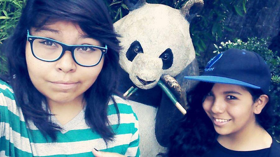 Pandita bebé ❤ Zoológico Relaxing Pandas♥