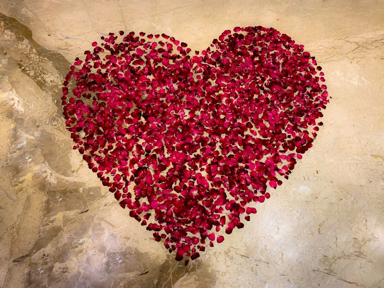 heart shape, love, positive emotion, emotion, romance, indoors, red, valentine's day - holiday, close-up, food and drink, directly above, high angle view, freshness, food, creativity, flower, still life, art and craft, large group of objects