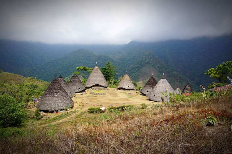 The Following the best view ever! Wae rebo its a small traditional village in flores island. Unique houses! Trekking 4 hours its really worth it! Wae Rebo INDONESIA Flores Island Traditional Architecture Rounded Cone Shape Unique Beauty Traditional Culture Beautifully Organized Miles Away