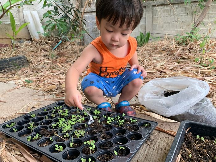 Child Childhood One Person Front View Men Real People Boys Day Dirt Males  Lifestyles Innocence Growth Container Casual Clothing Front Or Back Yard High Angle View Nature Plant Outdoors Gardening Planting