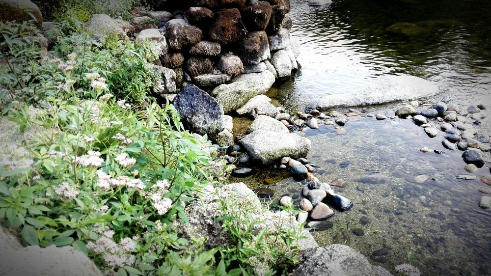 Relaxing Enjoying Life Amarante Getting Inspired Nature