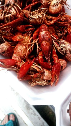 Food Stories Focus On Foreground Bright Crawfish Boil  Cajun Spicy Food Sea Food Crustacean Food And Drink Food Indoors  No People Close-up Red Day Freshness