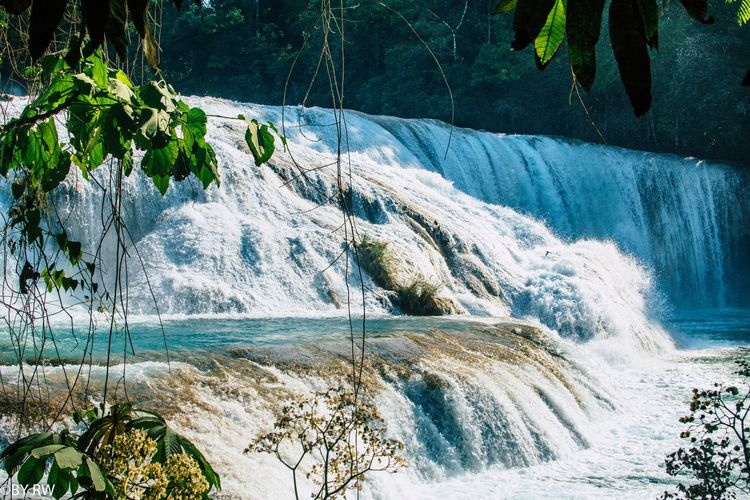 Chiapas Waterfall Water Tree Mountain Sky Wave Force Horizon Over Water Flowing Water Stream