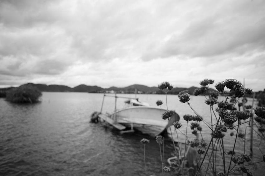 Boat Boats Bw Blackandwhite Monochrome M9-p Leica Voigtlander Lens Color-skopar 21mm F4 Japan Flower Flowers Broken Boat Broken Sea Moored Sailing Ship Beach Landscape