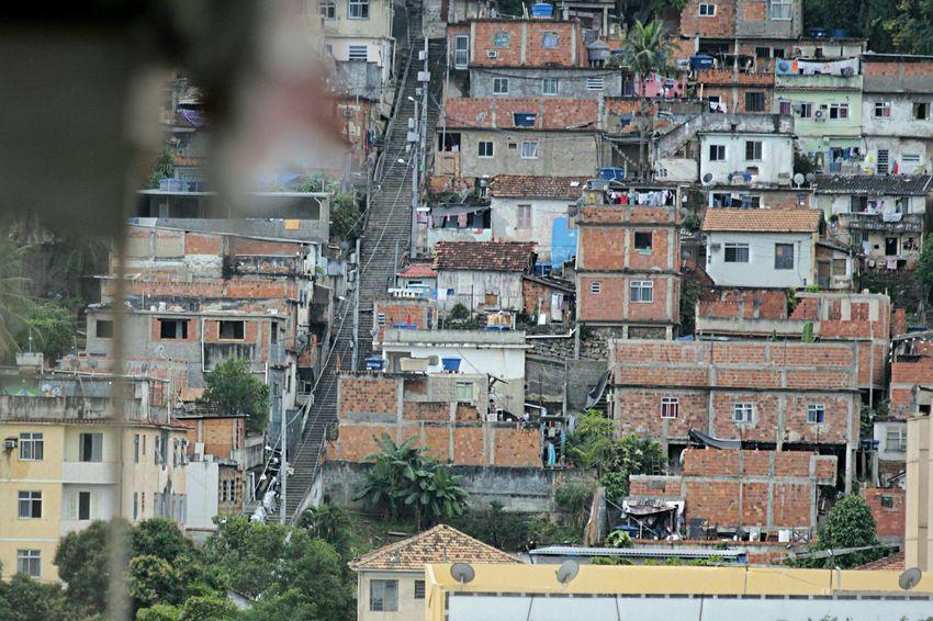 Slum Macacos Slum Monkeys Slum Favela Photojournalism The Photojournalist - 2015 EyeEm Awards EyeEmBestPics Poverty Comunity For A Better World