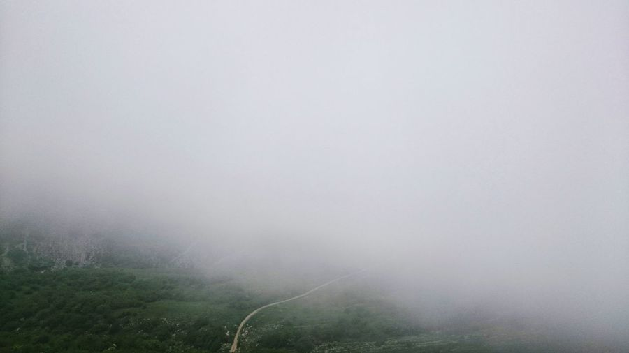 Scenic view of fog in foggy weather