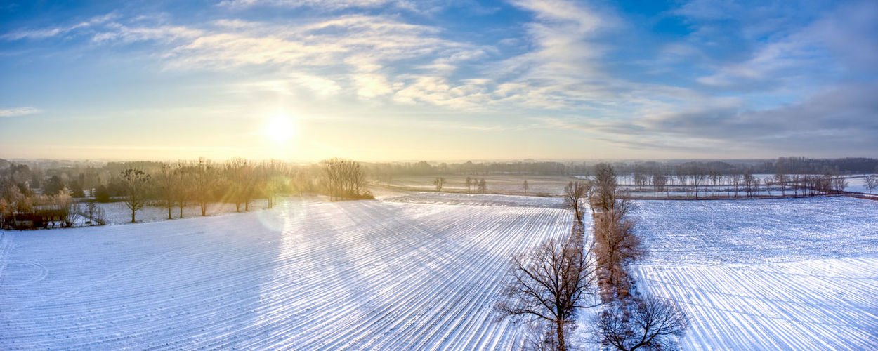 Field covered with snow in a cold winter morning Beauty In Nature Cloud - Sky Cold Temperature Day Frost Frozen Ice Nature No People Outdoors Picket Fence Scenics Sky Snow Sun Sunbeam Sunlight Tree Winter