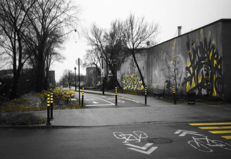 Bare Tree Black And White Communication Graffiti No People Outdoors Streetphotography Urban Art Yellow