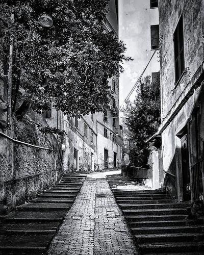 Genova città,