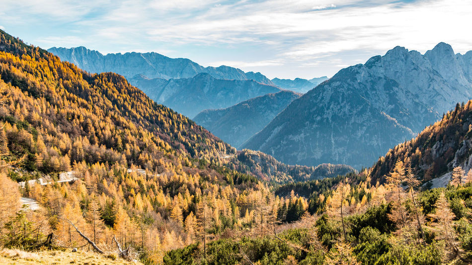 Over the hills and far away Autumn Autumn Colors Beauty In Nature Day Hiking Julian Alps Landscape Mountain Mountain Peak Mountain Range Nature No People Outdoors Pine Tree Pine Wood Pine Woodland Scenics Sky Slovenia