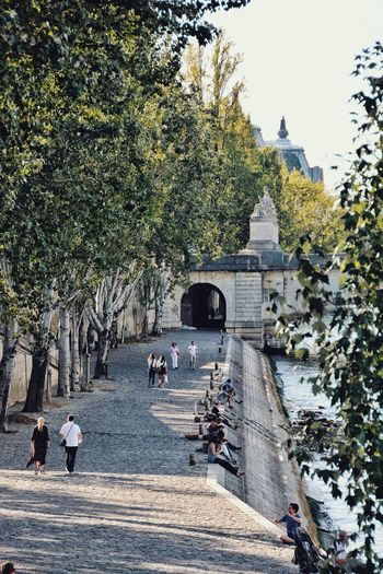 A Summer in Paris. Leisure Activity Green Architecture Paris Cityscape Tree Architecture Plant City Transportation Built Structure Building Exterior Group Of People Street Water