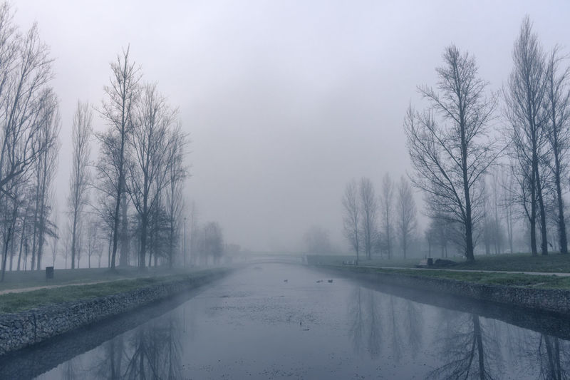 Some photos from my 'Welcome to Silent Hill' Collection. American Horror Story Melancholic Landscapes Nature Resident Evil Silent Hill Beauty In Nature Fog Foggy Mist Nature No People Poetry Sadness Sorrow