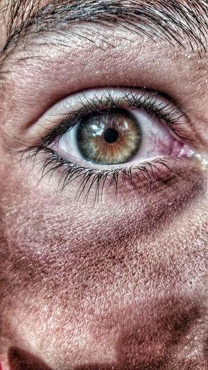 Eye Boy Human Eye Person Human Skin Boyeyes Amazing Color