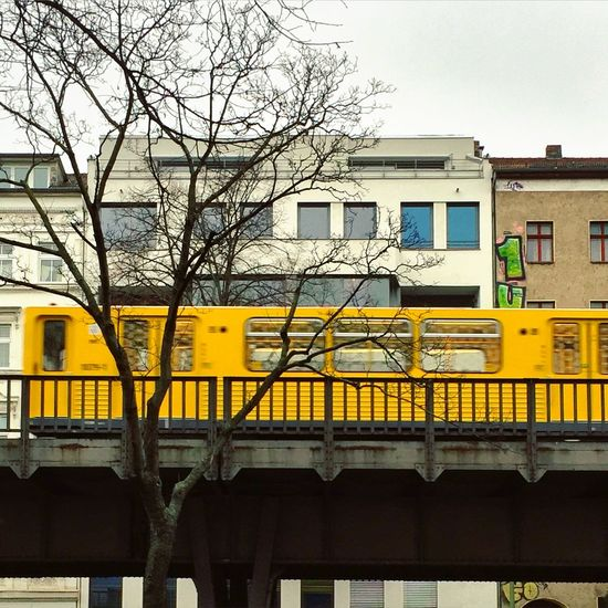 1up Abstract Architecture Architecture_collection Baugruppe Berlin Photography Berliner Ansichten Berlinstagram Branch Building Exterior Built Structure Cityscape Graffiti Graffiti & Streetart Kreuzberg Minimal Neubau No People Outdoors Skalitzer Straße Subway Tree TreePorn U1 Yellow