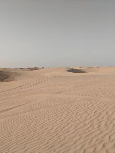 Arid Climate Beauty In Nature Climate Desert Land Landscape Nature Sand Sand Dune