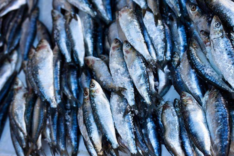 Full frame shot of fishes at market stall