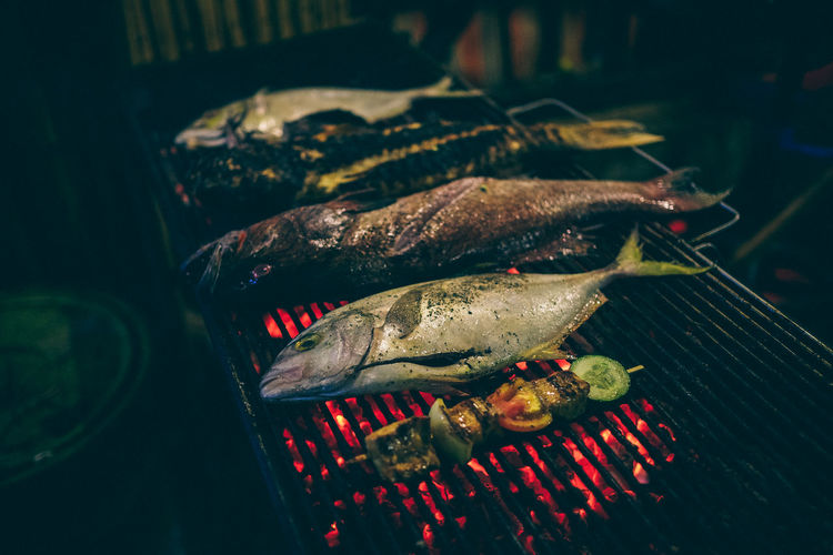 Close-up of fish grilled on barbeque grill at night