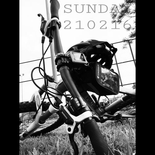 Nice Day Limited Colors Relaxing Blackandwhite Kayuh Bike Ride Polygon Cycle Nature IPhone Editing Bored