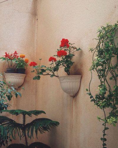 Flower Artsy Vintage