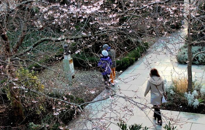 Women Lifestyles Real People Walking Girls Outdoors Plant Nature Tree Togetherness Day Adult People Streetphotography City Holiday Memories