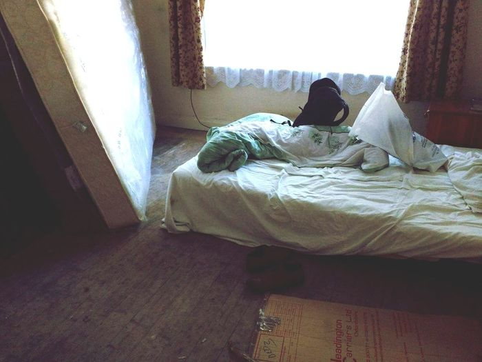 This was my first AirBNB Indoors  Home Interior Messy Resting Domestic Life Curtain Relaxation Day Indoors  Home Interior Messy Resting Domestic Life Curtain Relaxation Day Cozy airBNB