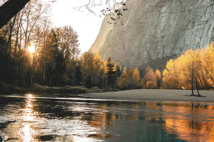 Yosemite National Park by Trevor Brown Beauty In Nature Day Fall Colors Lake Light Mountain National Park Nature No People Outdoors Reflection Reflection_collection River Scenics Sky Tranquil Scene Tree Water Wildlife Refuge Willow Tree Yosemite National Park